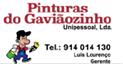 Pinturas do Gaviãozinho, Unipessoal, lda