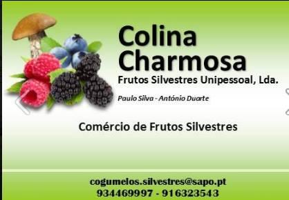 Colina Charmosa - Frutos silvestres, Unipessoal, Lda