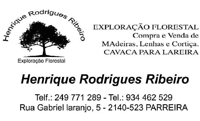 Henrique Rodrigues Ribeiro